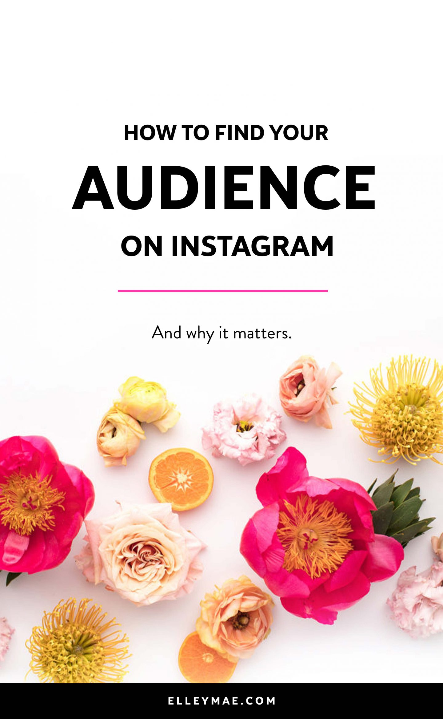 Despite what you may have thought up until now, your audience on Instagram won't always find you - you have to find them. But actively seeking out your die-hard fans on a platform like Instagram with over 400 million monthly users seems crazy right? WRONG. I've simplified the method to finding your audience on Instagram & teach you why it's important (oh and how to actually KEEP them! Learn more at ElleyMae.com | #InstagramMarketing #SocialMediaMarketing #SocialMediaGuru