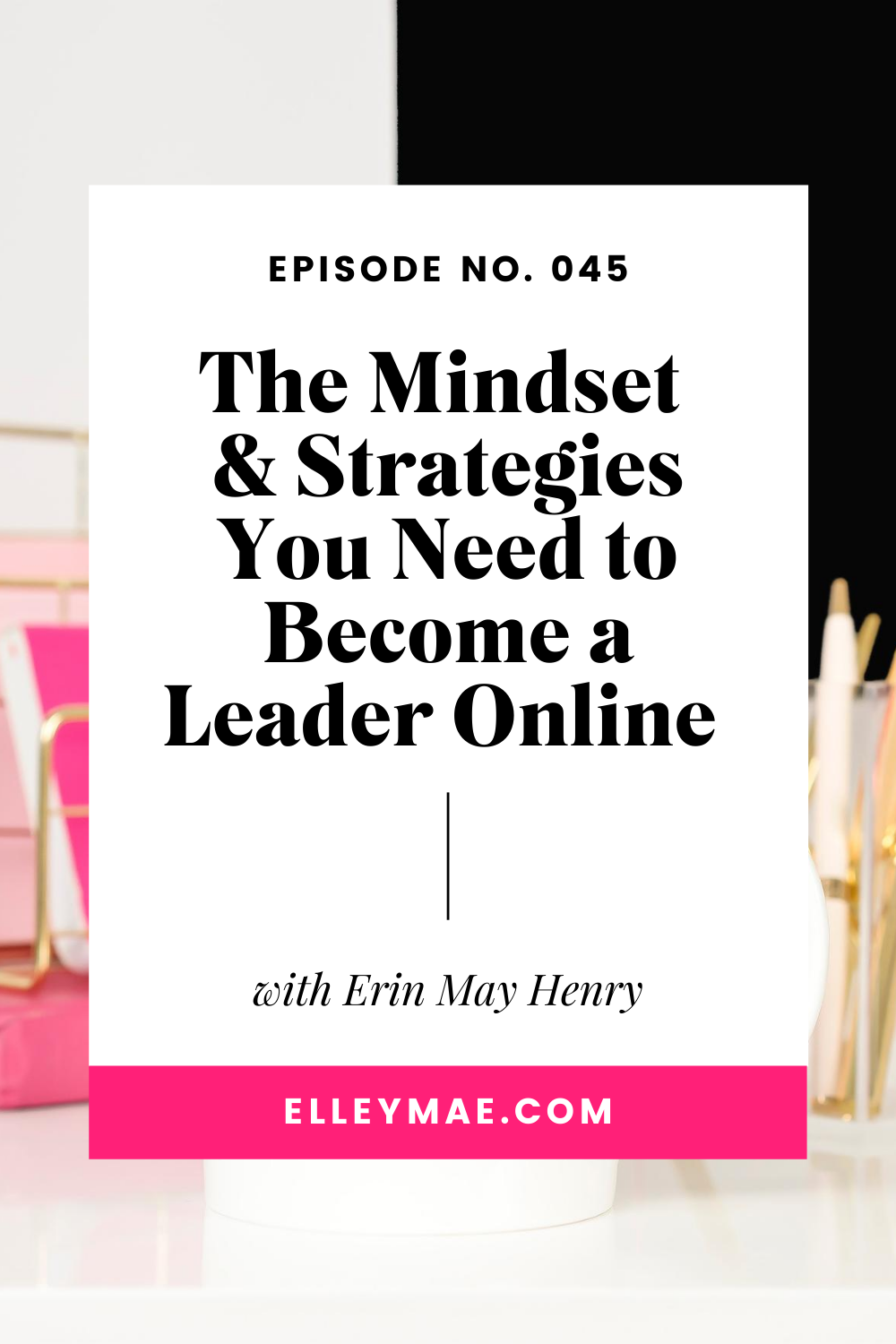 The Mindset & Strategies You Need to Become a Leader Online with Erin May Henry