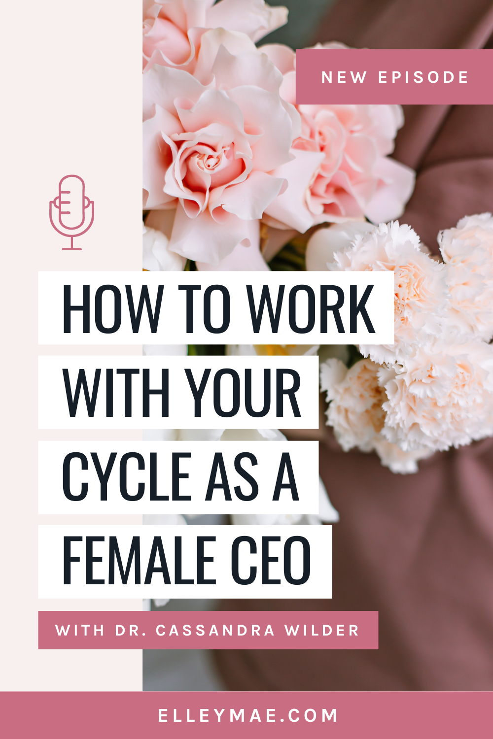 101. Balancing Your Hormones, Periods & Cycles in Business with Dr. Cassandra Wilder
